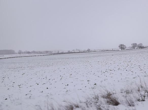 thrapston in snow
